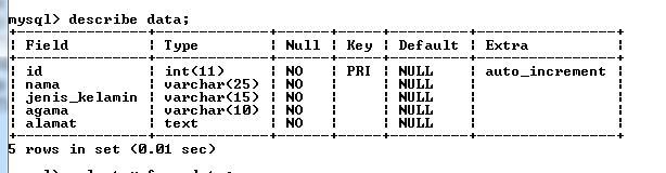 cara-import-data-dari-ms-exel-ke-database-mysql